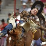 Tyler Scales from Severence, Colo. rides a horse named Phillip Scott bareback during the Cheyenne Frontier Days rodeo on Tuesday, July 26, 2011, at Frontier Park. Scales registered no time on the ride. (James Brosher/Wyoming Tribune Eagle)