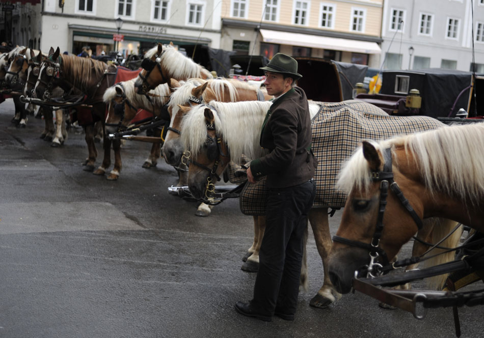 A horse carriage driver pets one of his horses as he awaits customers on Friday, May 21, 2010, in the Old Town area of Salzburg, Austria.