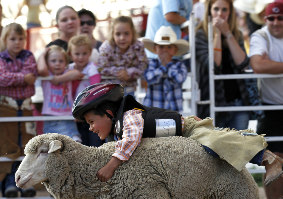 Drew Jackson, 6, reacts as he rides a sheep during the Laramie County Fair mutton bustin on Wednesday, Aug. 10, 2011, at Frontier Park. He logged an 82 score.