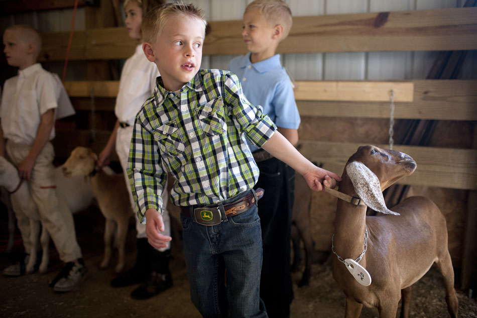 Quinn Curcio tries to convince a reluctant goat to fall in line before the start of the pee wee goat showmanship during the Cass County 4-H Fair on Monday, July 30, 2012, in Cassopolis, Mich. (James Brosher/South Bend Tribune)