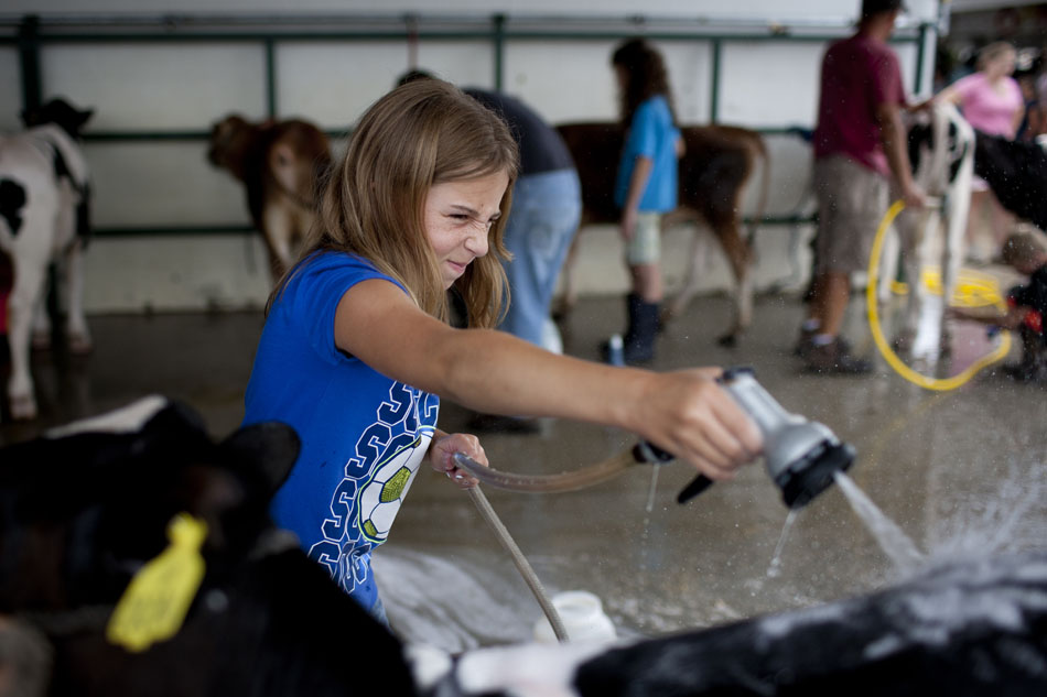 The day of the cow at the Elkhart County 4-H Fair | James Brosher ...