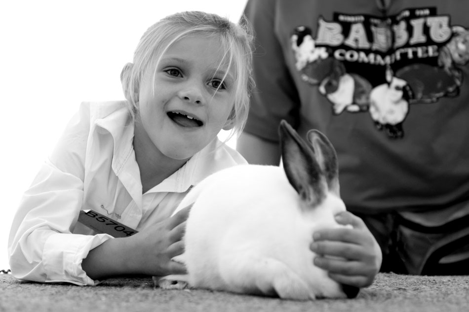 Alyvia Baker, 6, of Buchanan, reacts quickly to corral her rabbit, Carrot, during the rabbit showmanship at the Berrien County Youth Fair on Monday, Aug. 13, 2012, in Berrien Springs, Mich. (James Brosher/South Bend Tribune)