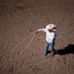 Cheyenne Frontier Days Steer Roping