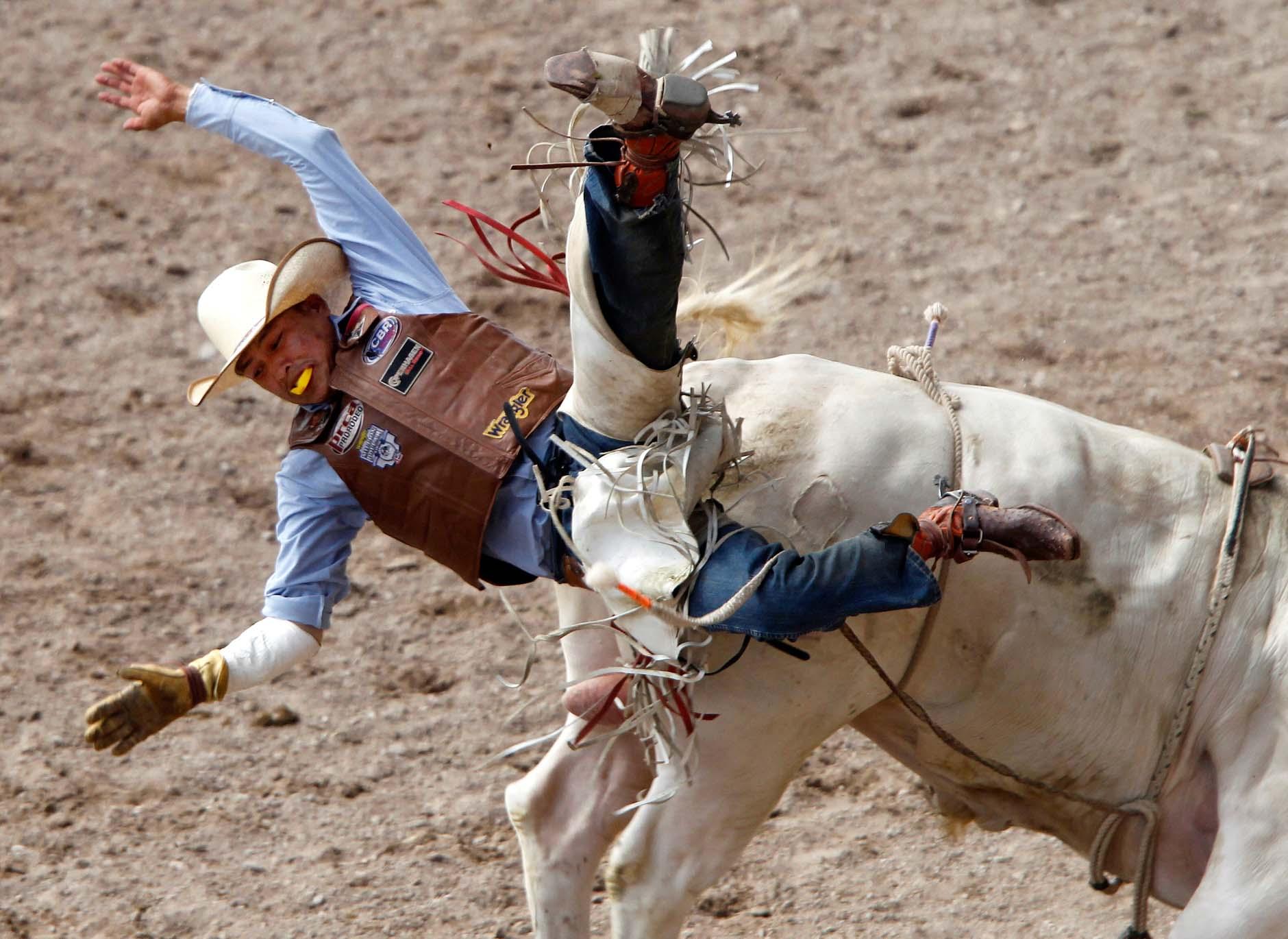 Cheyenne Frontier Days Rodeo