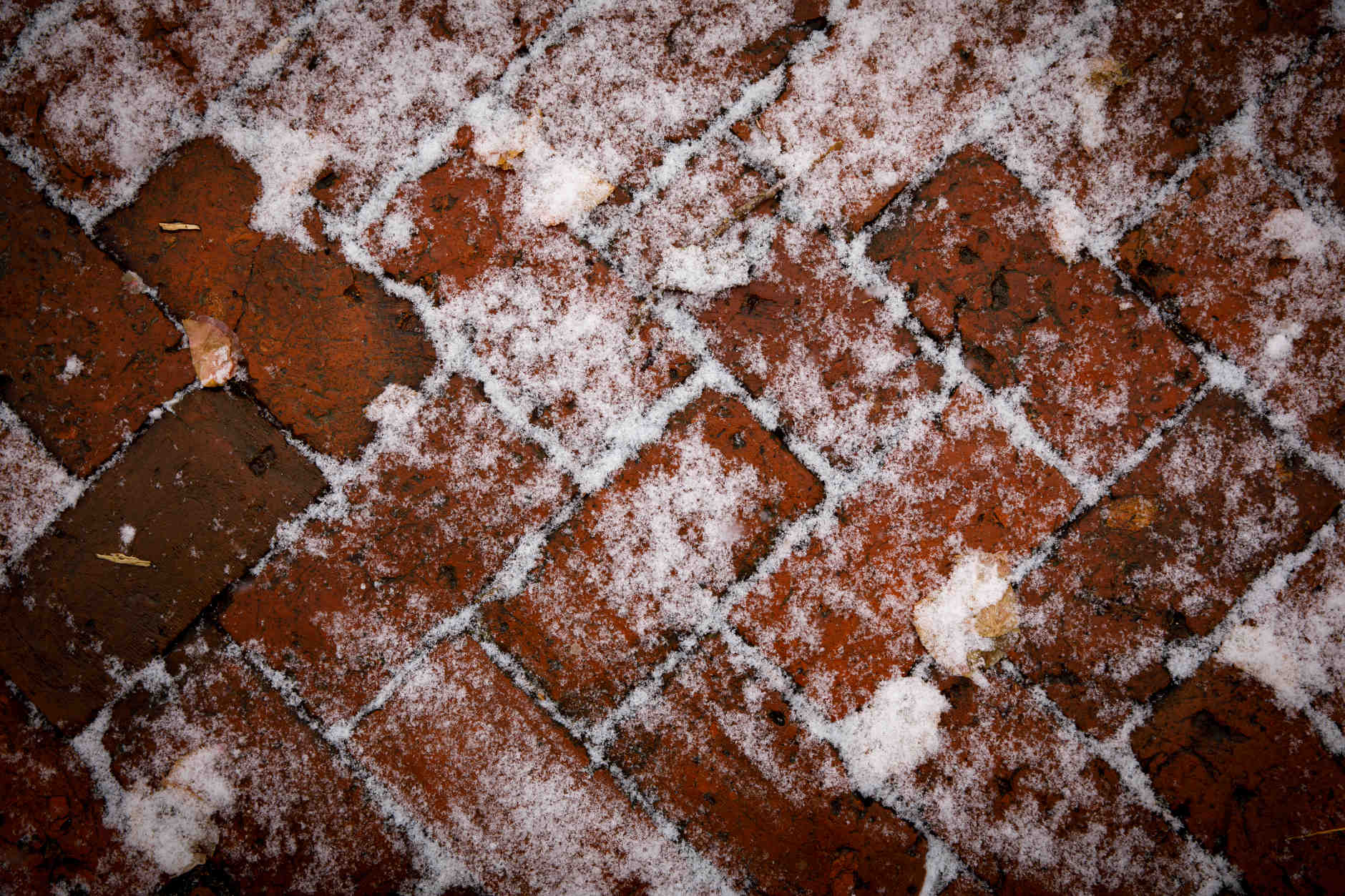 Snow accumulates on a brick pathway in the Old Crescent at IU Bloomington on Thursday, March 7, 2019. (James Brosher/Indiana University)