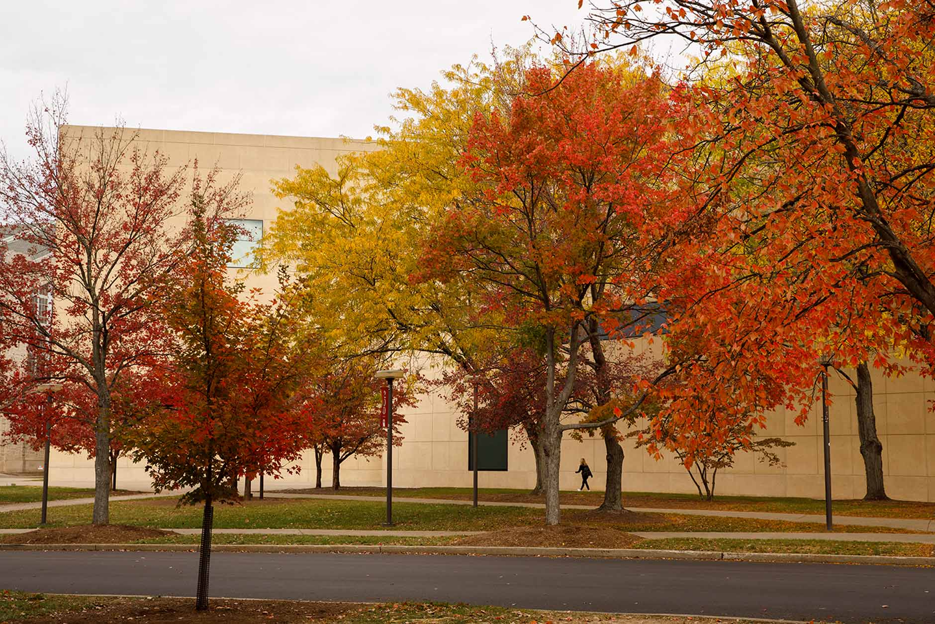 The Eskenazi Museum of Art is pictured on a fall day at IU Bloomington on Thursday, Oct. 24, 2019. (James Brosher/Indiana University)