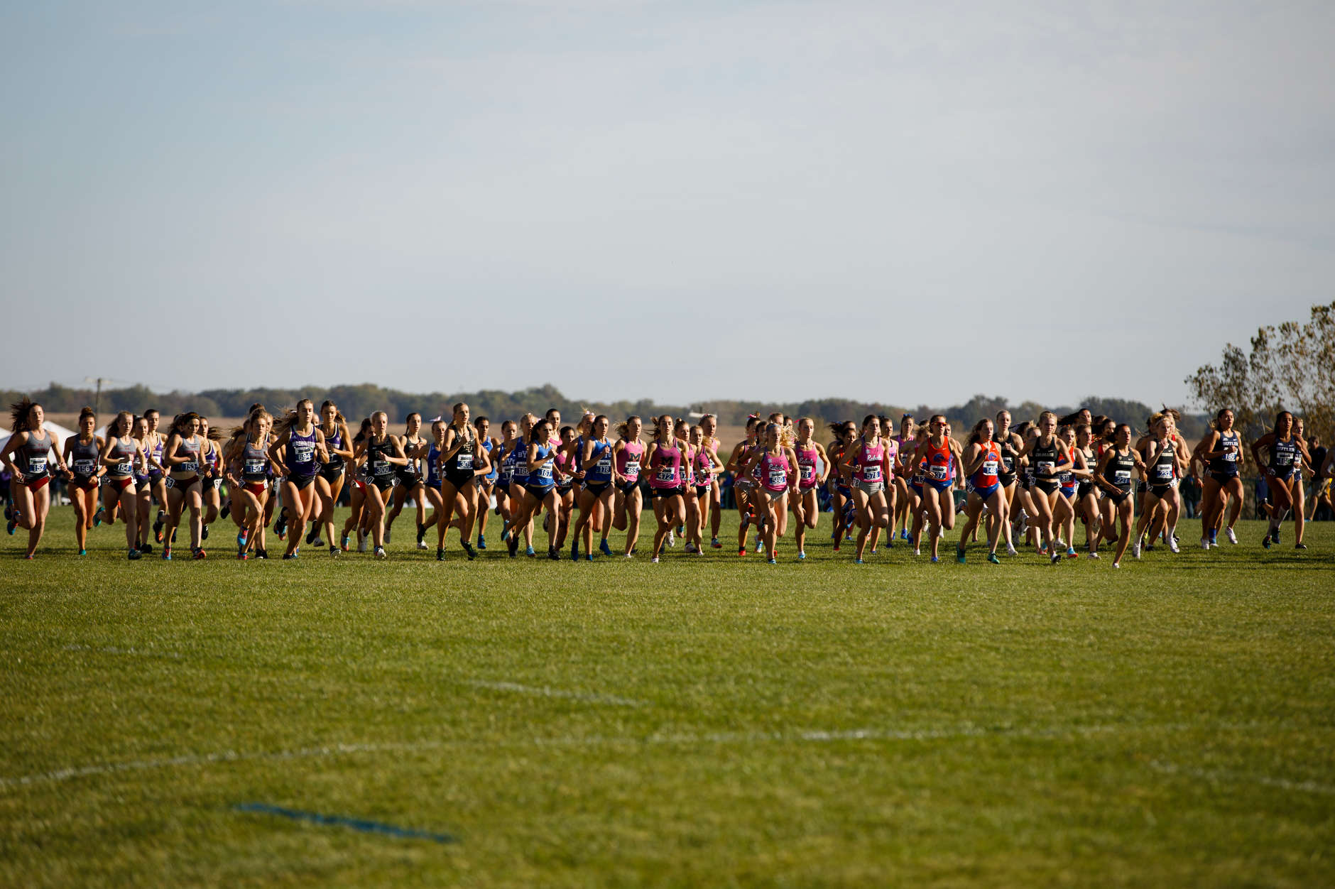 Michigan runners compete during the Indiana State Pre-National Cross Country Invitational in Terre Haute, Indiana on Saturday, Oct. 19, 2019. (Photo by James Brosher)