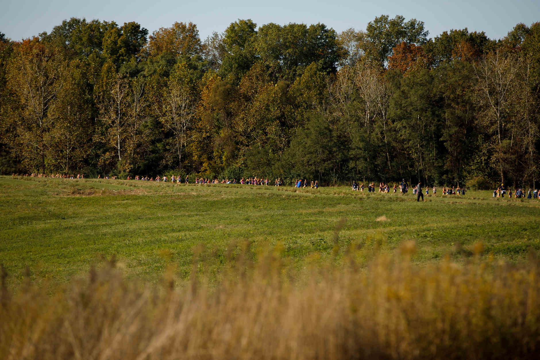 Runners race down the backstretch during the Indiana State Pre-National Cross Country Invitational in Terre Haute, Indiana on Saturday, Oct. 19, 2019. (Photo by James Brosher)