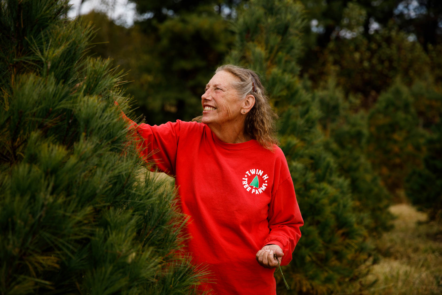 Twin H Tree Farms President Jeanne Hopwood inspects a Christmas tree at the farm near Bloomington on Tuesday, Oct. 15, 2019. (James Brosher/Indiana University)